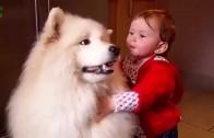 Śmieszne zwierzęta i dzieci
