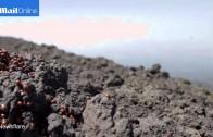 Zjazd zboczami wulkanu Stromboli